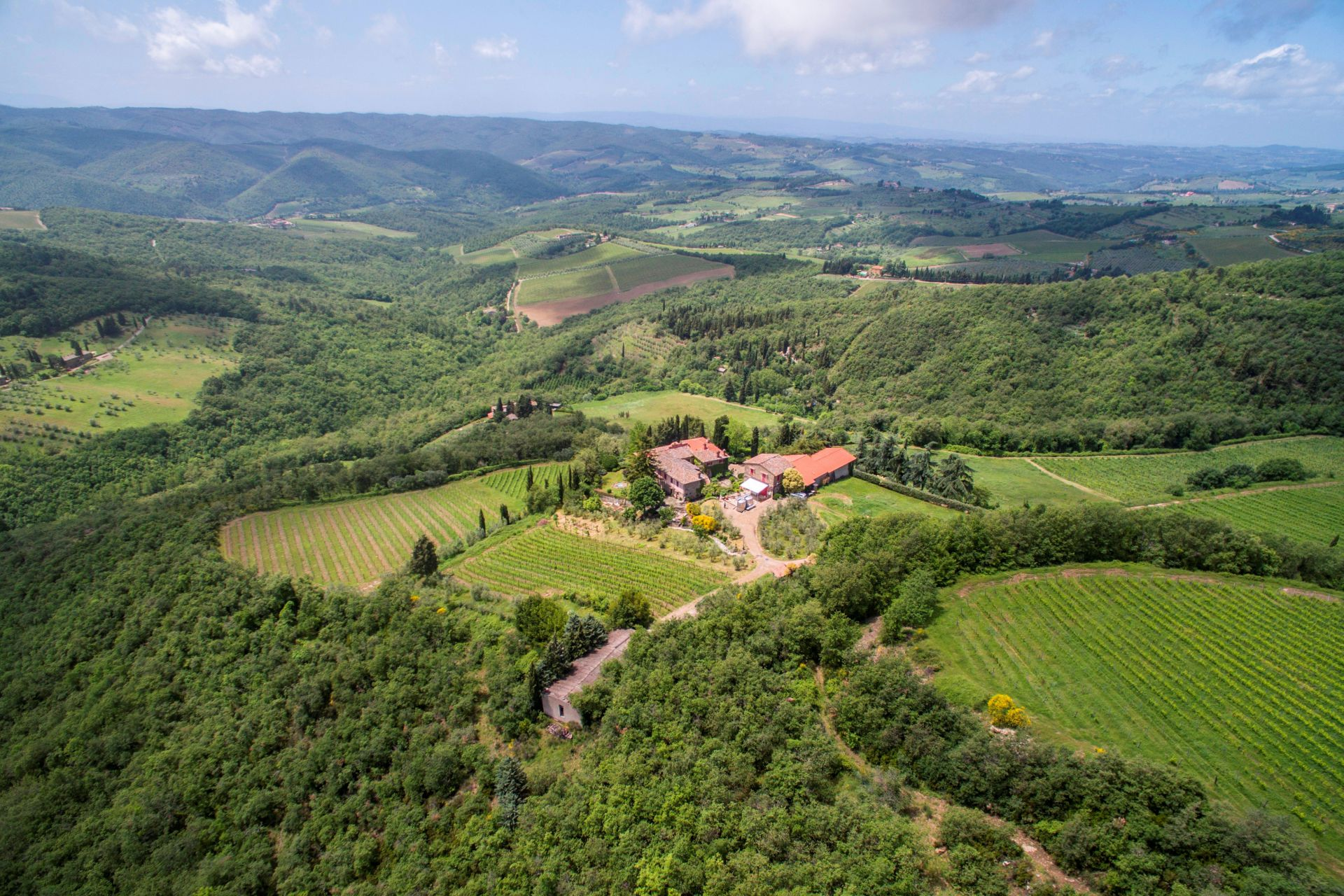 MULTI-AWARD WINNING WINERY WITH VILLA FOR SALE IN TUSCANY